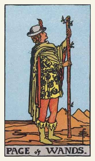 Prince (Page) of Wands Tarot card